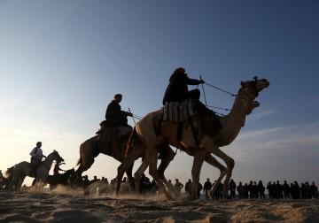 16 فبراير 2018 - سباق محلي للخيول والجمال على شاطيء مدينة غزة