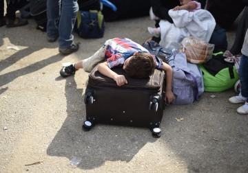 مشاهد من معاناة الفلسطينيين خلال سفرهم عبر معبر رفح البري اليوم