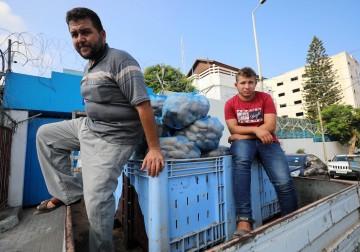 مزارعو غزة يناشدون لتصدير منتجاتهم إلى الضفة