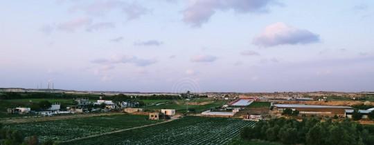 الأجواء الغائمة في سماء فلسطين
