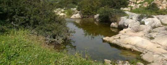 أراضي وادي قانا