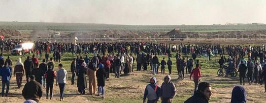 خطة الكيان لتهجير غزة: مطار التراتنسفير في الجنوب