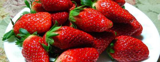 تناول 60 غراماً من الفراولة يومياً خلال فترة معينة يقي من سرطان المريء