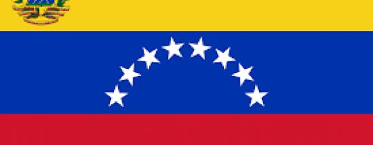 التجربة الفنزويلية