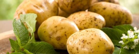 تعتبر البطاطس من الأغذية التي توفر عناصر مفيدة وأساسيّة لجسد الإنسان