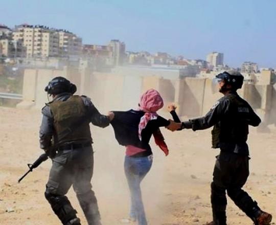 جنود الاحتلال يعتقلون فتاة فلسطينية بالضفة