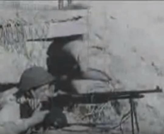 أرشيفية: غزة عام 1955