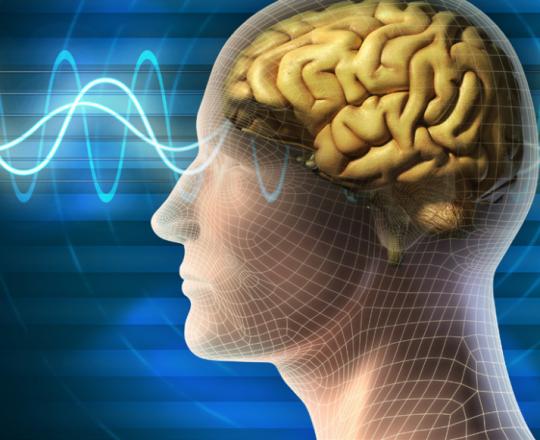 دماغ إشعاع ذاكرة.png