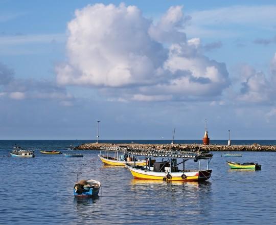 الأجواء الغائمة فوق بحر غزّة