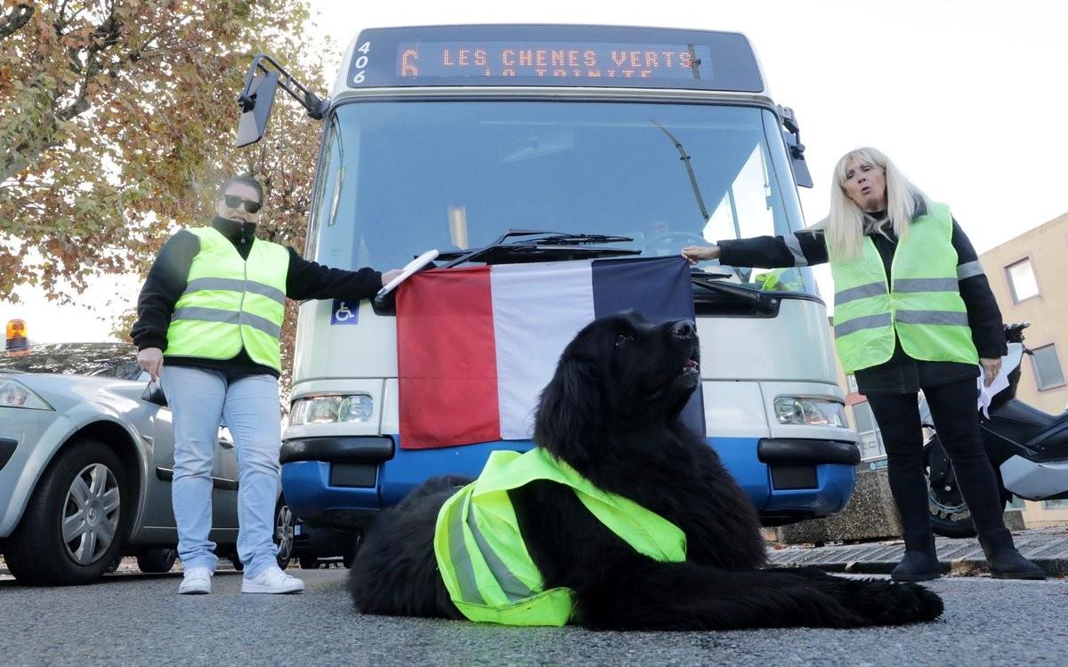 احتجاجات في فرنسا ضد سياسات ماكرون  (4).jpg